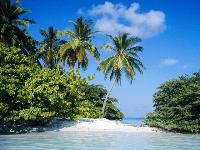 maldive 640x480 7