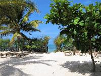oferta speciala Zanzibar