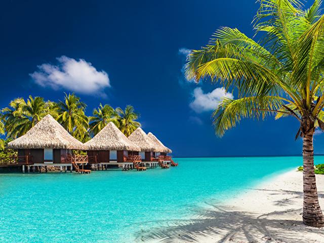 Sejur last minute Maldive